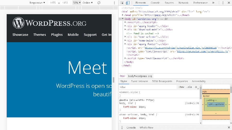 The WordPress website and its HTML.
