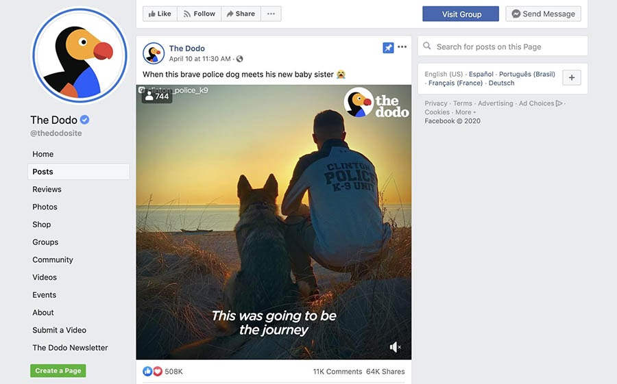A video about a police dog on The Dodo's Facebook page.