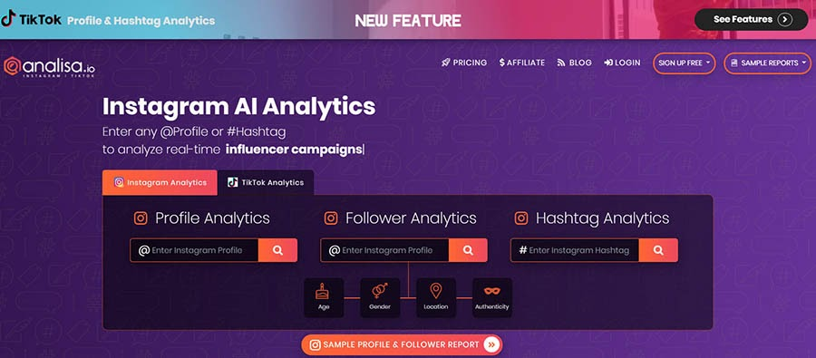 Analisa.io home page with Instagram analytics.