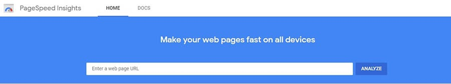 Google's PageSpeed Insights speed test tool.